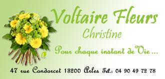 carte-visite-voltaire-fleurs-evenement-noel-2007.jpg
