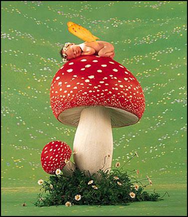champignon-enfant1.jpg