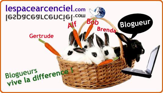 blogueurs-acceptez-vos-differences.jpg