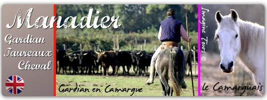 imagine-tours-13-manade-chevaux