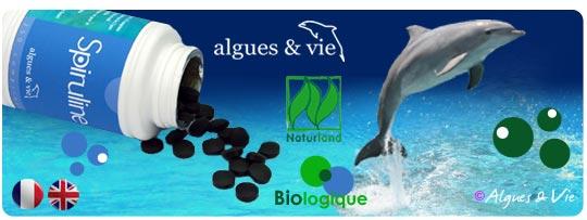 Spiruline-biologique-algues-et-vie