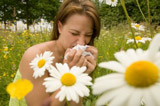 allergie-pollens-Aroma-essent