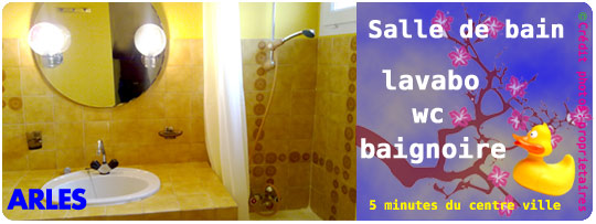 Location-arles-13-F-sallebain