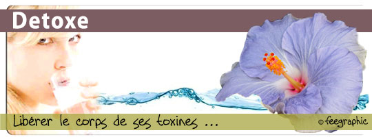 ioniseur-03-Detoxe-2010-web