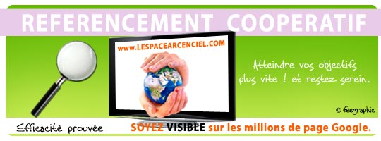 referencement-cooperatif-2010