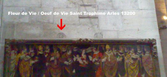 La Fleur de Vie Fleur-de-vie-st-trophime-arles-13200