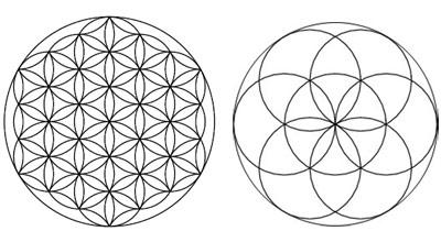 La Fleur De Vie Les Origines Lespacearcenciel Com