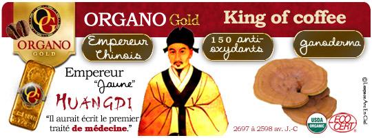 Ganoderma Lucidum Organo Gold :-)