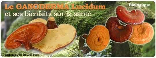 Le Ganoderma Lucidum et ses bienfaits sur la Santé :-)