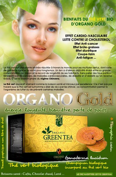 Thé Vert Organo Gold