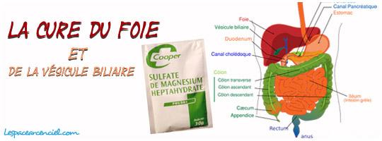 Cure du Foie et de la Vésicule Biliaire