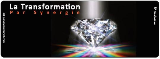 La Transformation par Synergie :-)