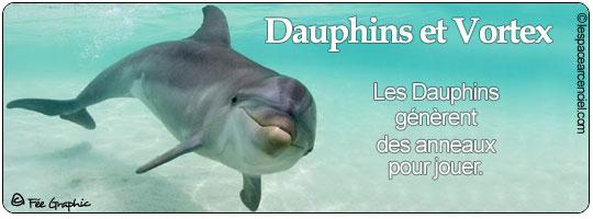 Dauphin et Vortex Magnifique :-)