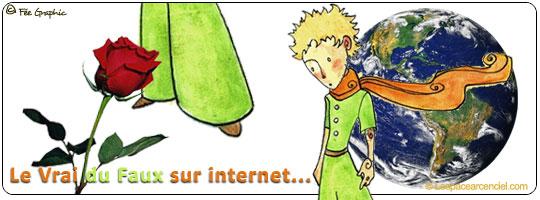 Comment reconnaître le Vrai du Faux sur Internet ?