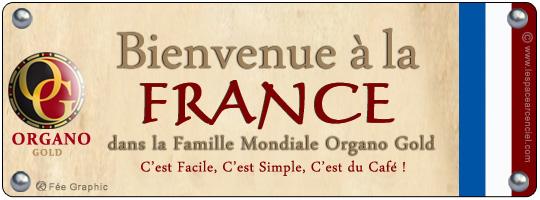 Organo Gold arrive en France et on ne Parle déjà que de ça