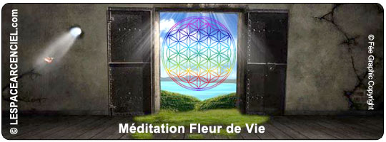 Meditation-FDV
