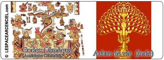 Arbre-de-vie-3-4