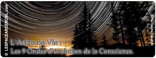 Les-9-ondes-d-evolution