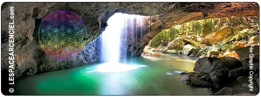 Fleur-de-vie-dans-une-Grotte