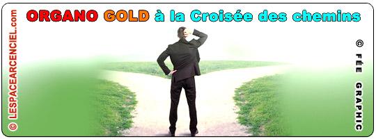 Organo-Gold-la-croisee