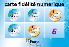 Carte-Emrys-fidelite-points-jaunes