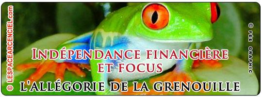 grenouille-focus